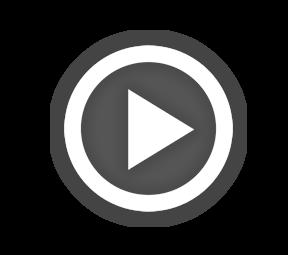 Mistři parkování - nejlepší videa